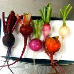 fresh on charles veg
